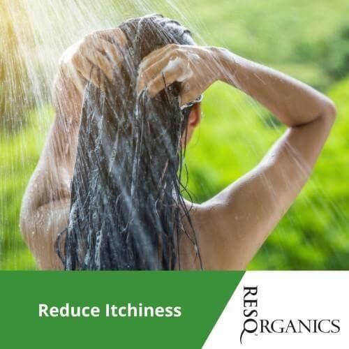 Thick & Nutrient Rich pH Balanced Shampoo - ResQ Organics Pets