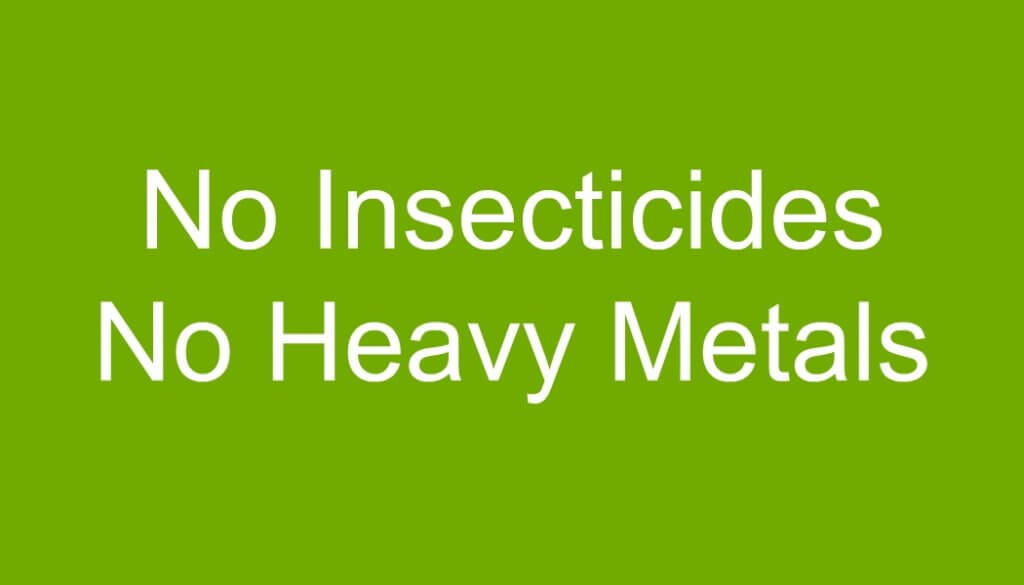 cbd-hemp-oil-for-pets