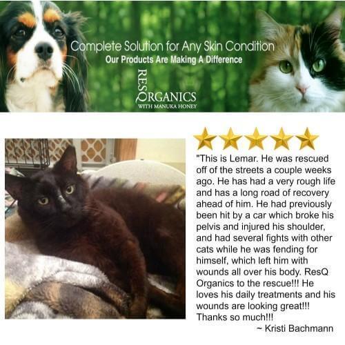 Pet Skin Treatment for Dogs & Cats - ResQ Organics Pets